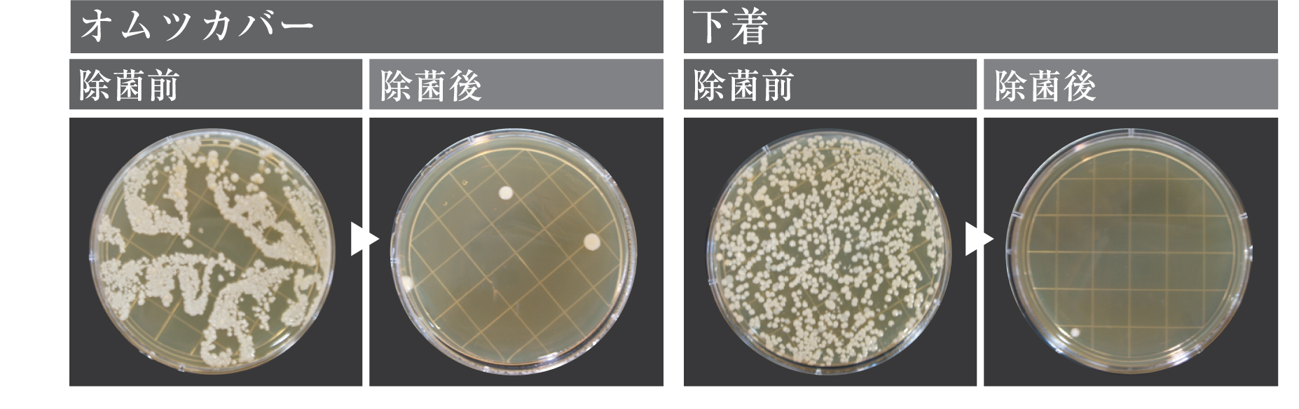 電解水を洗濯水として使用した際の除菌効果